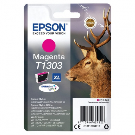 EPSONC13T13034012