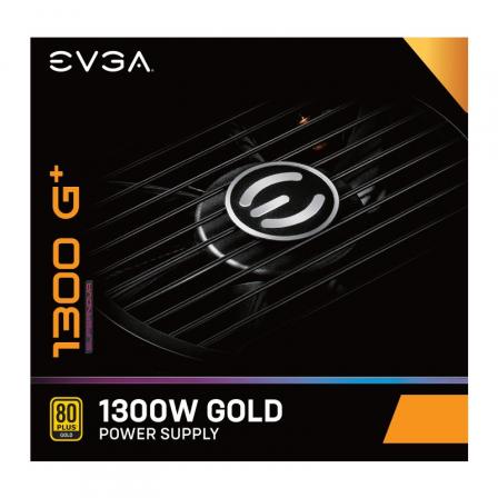 EVGA220-GP-1300-X2