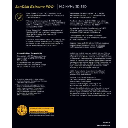 SANDISKSDSSDXPM2-1T00-G25