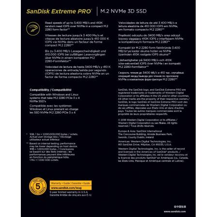 SANDISKSDSSDXPM2-500G-G25